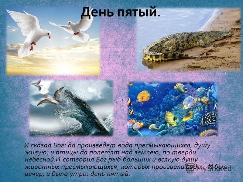 И сказал Бог: да произведет вода пресмыкающихся, душу живую; и птицы да полетят над землею, по тверди небесной.И сотворил Бог рыб больших и всякую душу животных пресмыкающихся, которых произвела вода… И был вечер, и было утро: день пятый. День пятый.