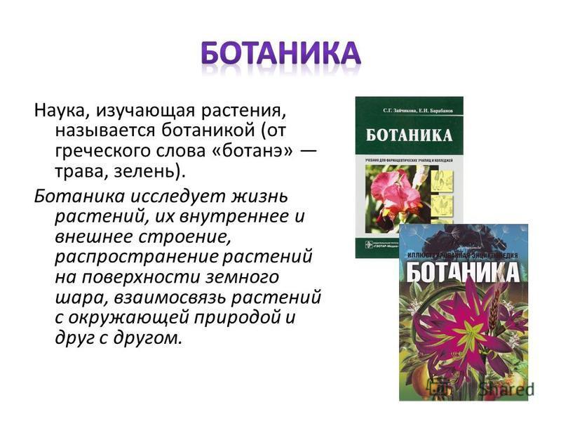 Наука, изучающая растения, называется ботаникой (от греческого слова «ботанэ» трава, зелень). Ботаника исследует жизнь растений, их внутреннее и внешнее строение, распространение растений на поверхности земного шара, взаимосвязь растений с окружающей