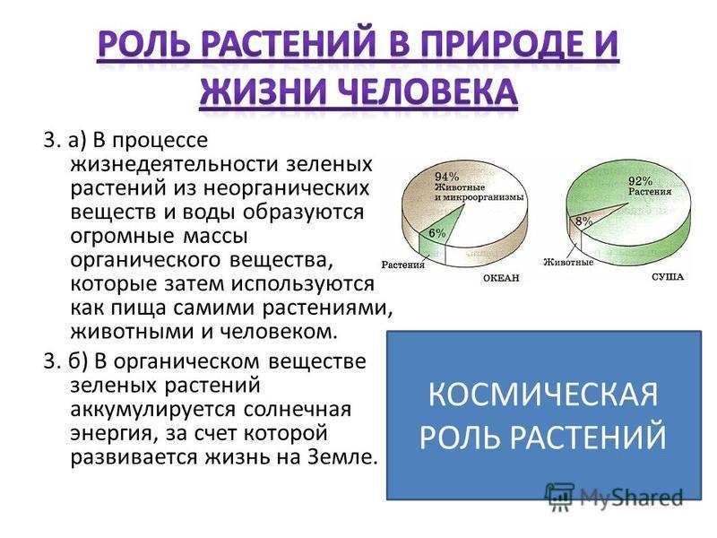 3. а) В процессе жизнедеятельности зеленых растений из неорганических веществ и воды образуются огромные массы органического вещества, которые затем используются как пища самими растениями, животными и человеком. 3. б) В органическом веществе зеленых