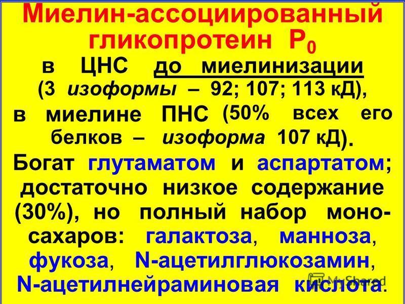 Миелин-ассоциированный гликопротеин P 0 в ЦНС до миелинизации (3 лизоформы – 92; 107; 113 кД), в миелине ПНС (50% всех его белков – лизоформа 107 кД ). Богат глутаматом и аспартатом; достаточно низкое содержание (30%), но полный набор моно- сахаров: