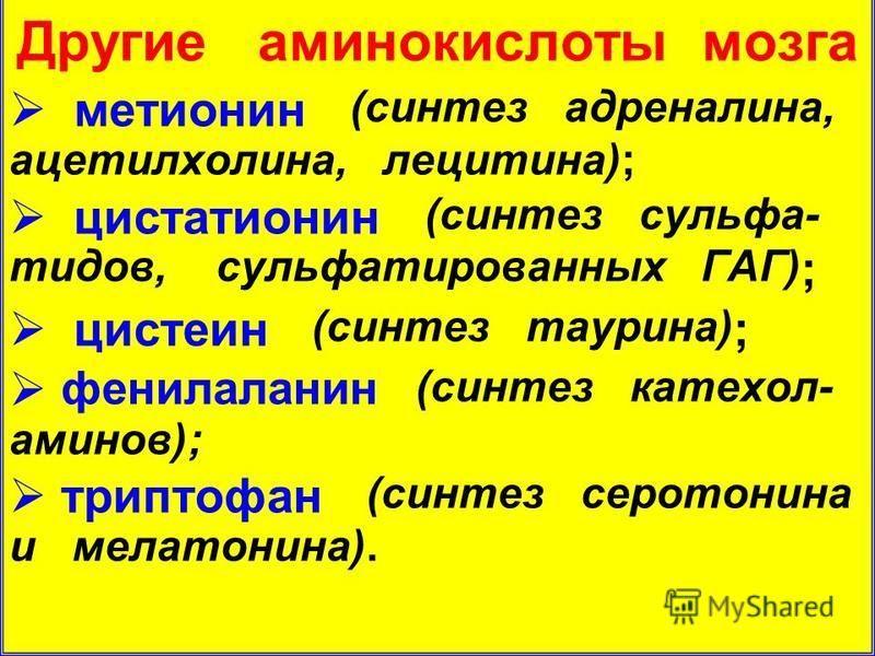 Другие аминокислоты мозга метионин (синтез адреналина, ацетилхолина, лецитина); цистатионин (синтез сульфа- тидов, сульфатированных ГАГ) ; цистеин (синтез таурина) ; фенилаланин (синтез катехол- аминов); триптофан (синтез серотонина и мелатонина).