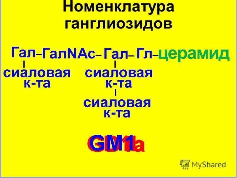 Номенклатура ганглиозидов GD1a GD1b церамид Гл – ГалNAc – Гал – сиаловая к-та – – GМ1 –