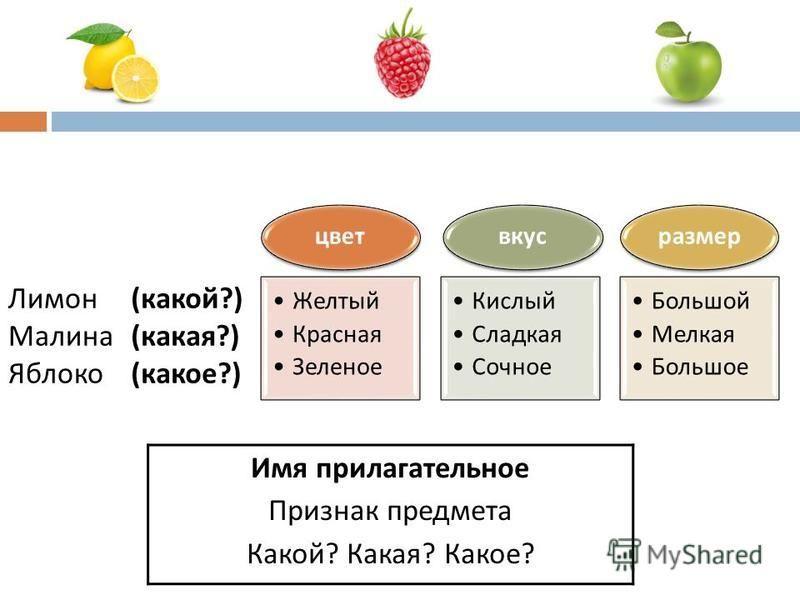 цвет Желтый Красная Зеленое вкус Кислый Сладкая Сочное размер Большой Мелкая Большое Лимон Малина Яблоко ( какой ?) ( какая ?) ( какое ?) Имя прилагательное Признак предмета Какой? Какая? Какое?