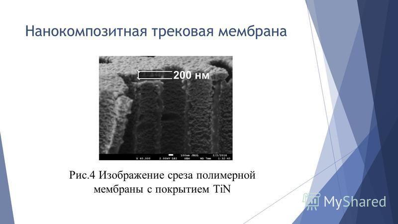 Рис.4 Изображение среза полимерной мембраны с покрытием TiN