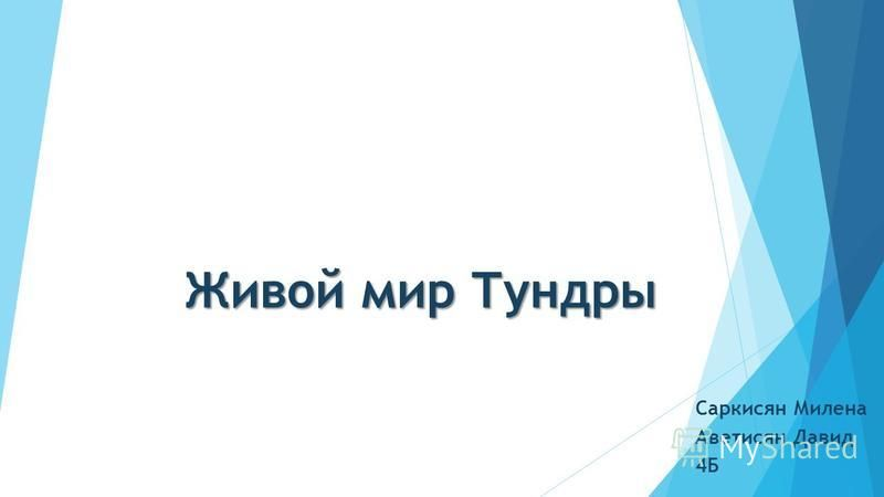 Живой мир Тундры Саркисян Милена Аветисян Давид 4Б