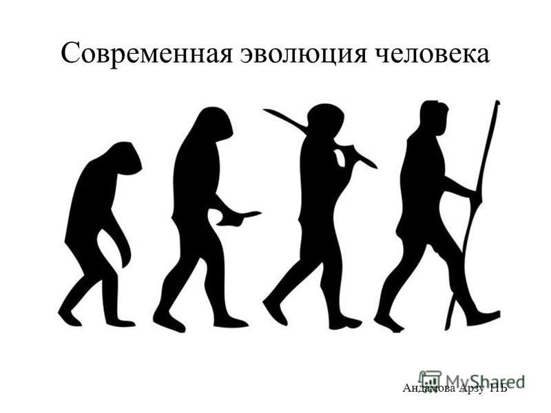 Современная эволюция человека Андамова Арзу 11Б