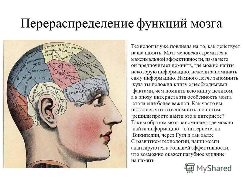 Перераспределение функций мозга Технология уже повлияла на то, как действует наша память. Мозг человека стремится к максимальной эффективности, из-за чего он предпочитает помнить, где можно найти некоторую информацию, нежели запоминать саму информаци