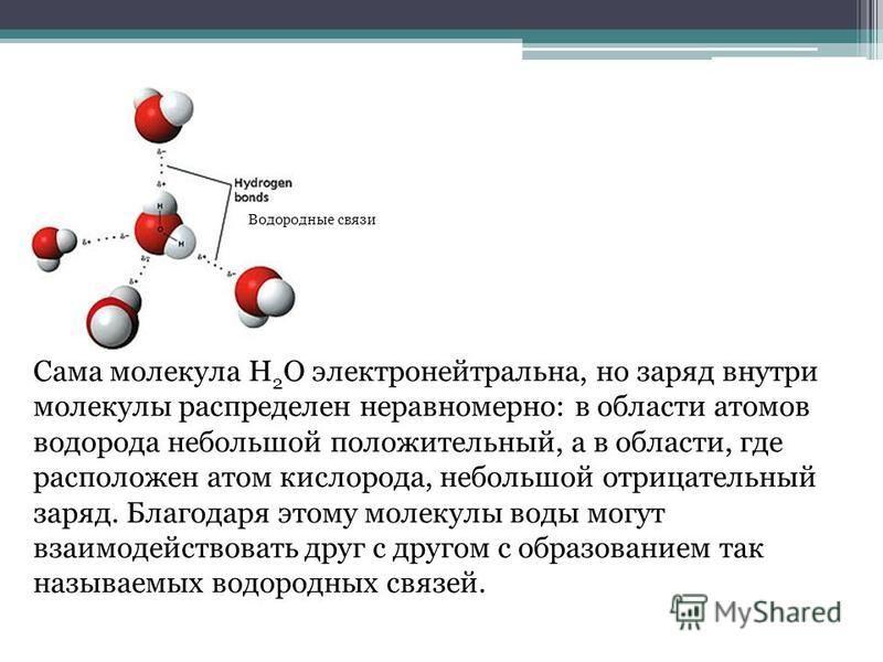 Сама молекула Н 2 O электронейтральна, но заряд внутри молекулы распределен неравномерно: в области атомов водорода небольшой положительный, а в области, где расположен атом кислорода, небольшой отрицательный заряд. Благодаря этому молекулы воды могу