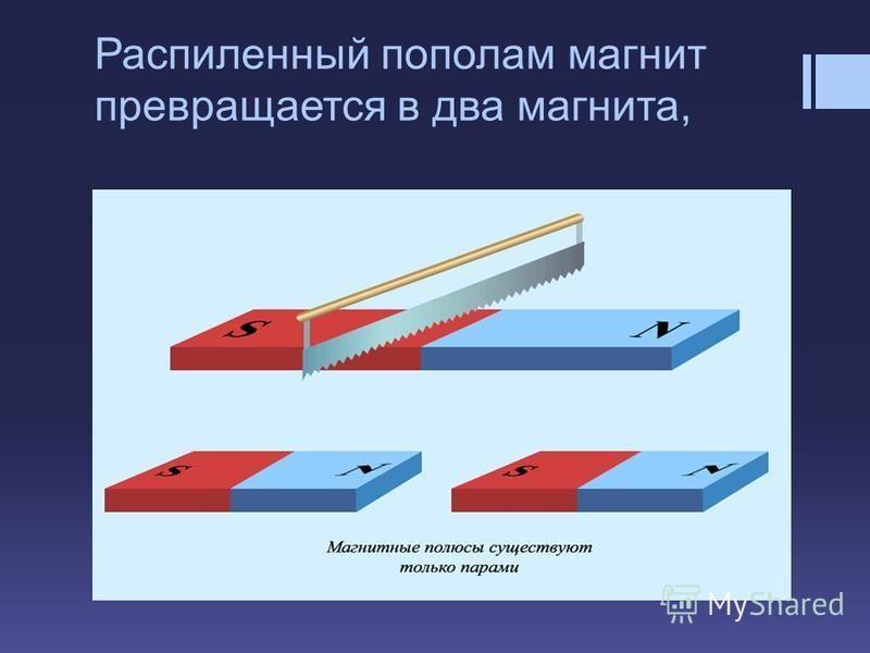 Распиленный пополам магнит превращается в два магнита,