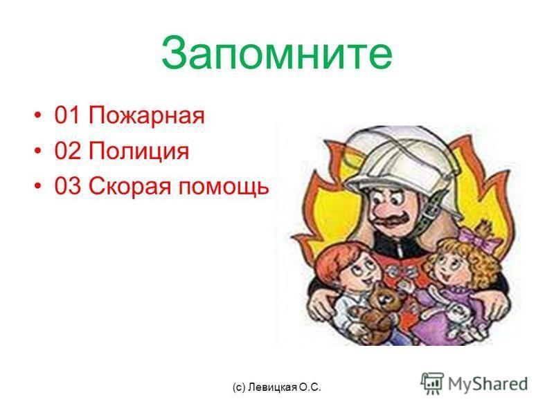 Запомните 01 Пожарная 02 Полиция 03 Скорая помощь (с) Левицкая О.С.