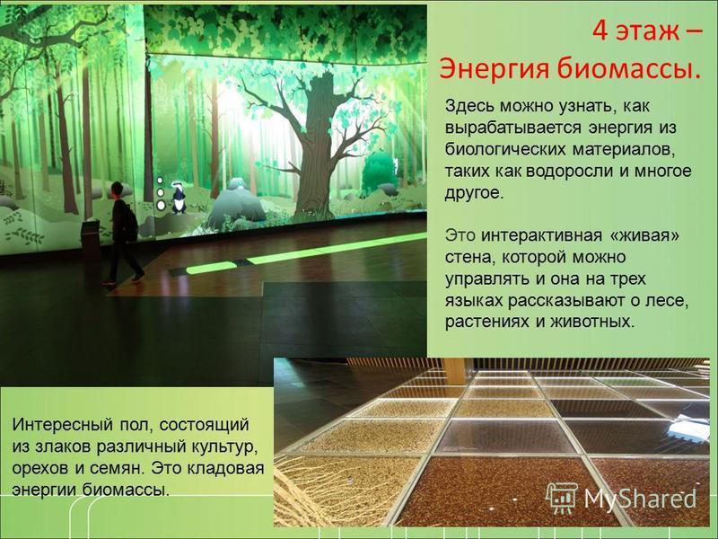 4 этаж – Энергия биомассы. Интересный пол, состоящий из злаков различный культур, орехов и семян. Это кладовая энергии биомассы. Здесь можно узнать, как вырабатывается энергия из биологических материалов, таких как водоросли и многое другое. Это инте