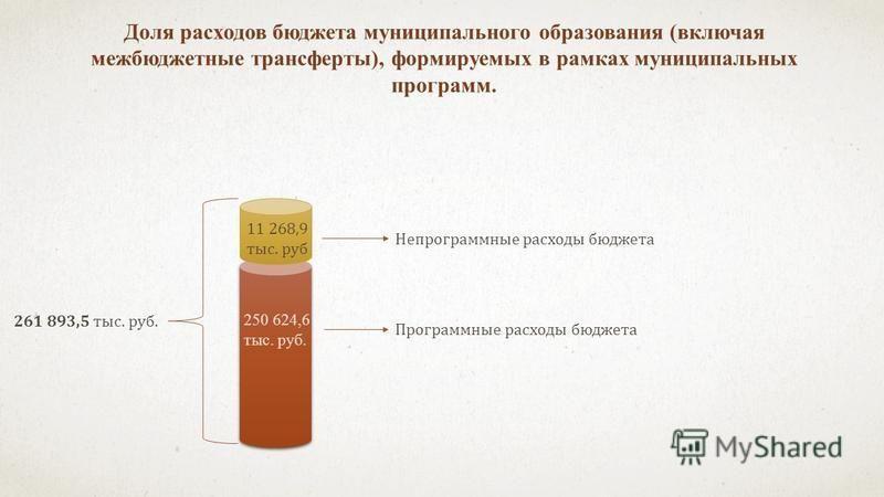Доля расходов бюджета муниципального образования (включая межбюджетные трансферты), формируемых в рамках муниципальных программ. 261 893,5 тыс. руб. 11 268,9 тыс. руб 250 624,6 тыс. руб. Непрограммные расходы бюджета Программные расходы бюджета