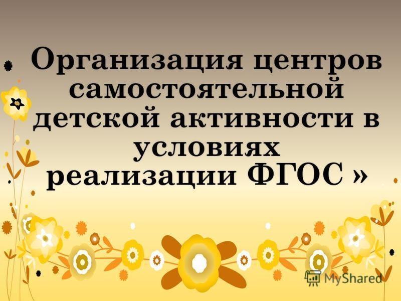 Организация центров самостоятельной детской активности в условиях реализации ФГОС »