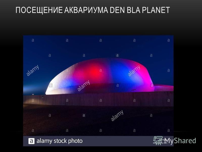 ПОСЕЩЕНИЕ АКВАРИУМА DEN BLA PLANET