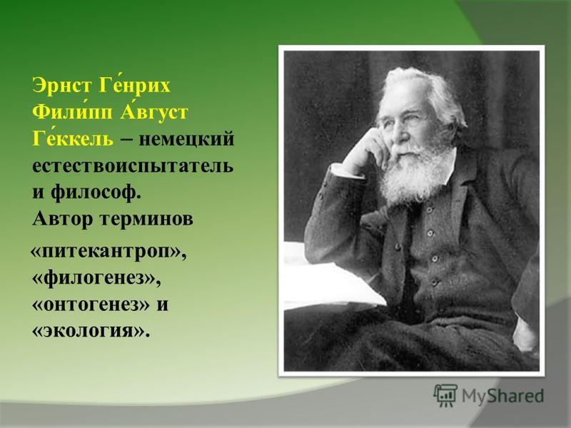 Эрнст Ге́нрих Фили́пп А́вгуст Ге́ккель – немецкий естествоиспытатель и философ. Автор терминов «питекантроп», «филогенез», «онтогенез» и «экология».