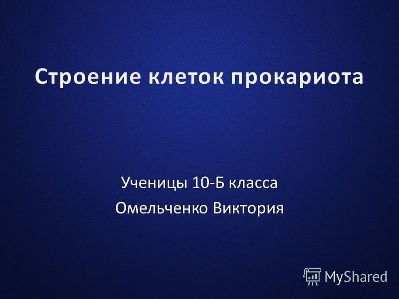 Ученицы 10-Б класса Омельченко Виктория