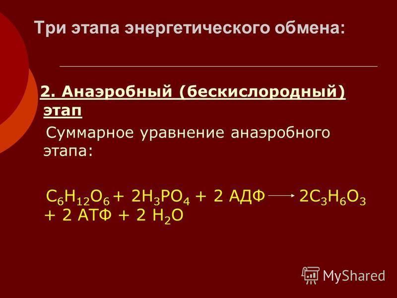 Три этапа энергетического обмена: 2. Анаэробный (бескислородный) этап Суммарное уравнение анаэробного этапа: С 6 Н 12 О 6 + 2Н 3 РО 4 + 2 АДФ 2С 3 Н 6 О 3 + 2 АТФ + 2 Н 2 О