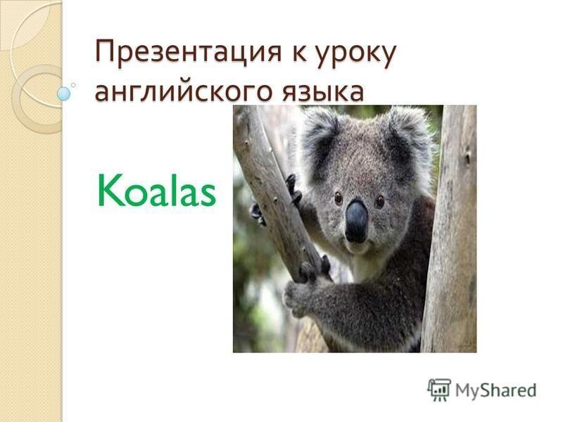 Презентация к уроку английского языка Koalas