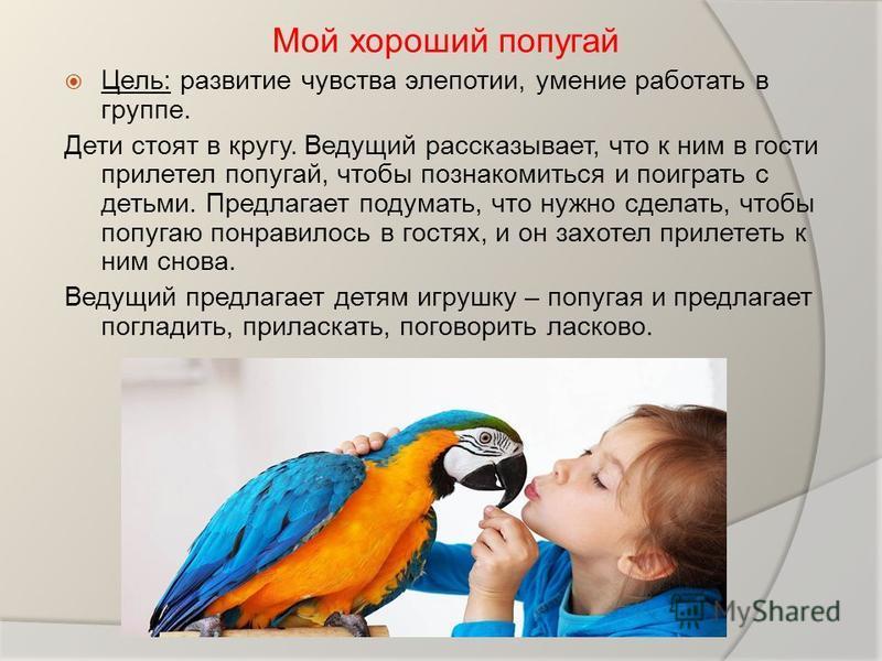 Мой хороший попугай Цель: развитие чувства элепотии, умение работать в группе. Дети стоят в кругу. Ведущий рассказывает, что к ним в гости прилетел попугай, чтобы познакомиться и поиграть с детьми. Предлагает подумать, что нужно сделать, чтобы попуга