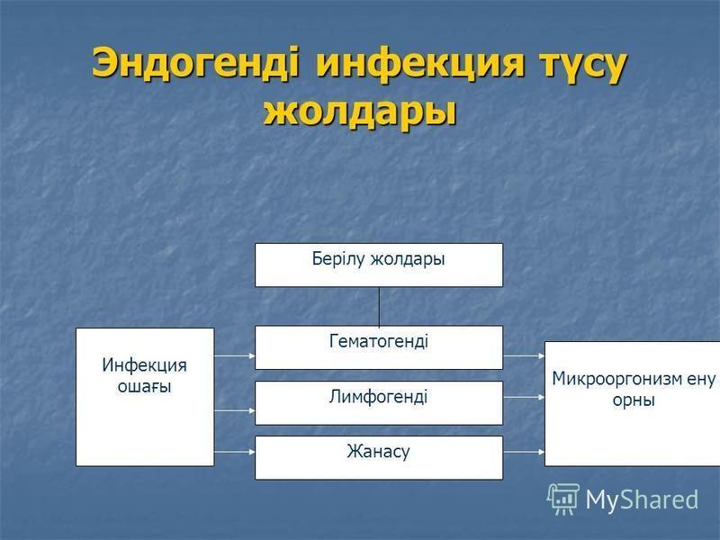 Эндогенді инфекция түсу жолдары Инфекция ошағы Берілу жолдары Гематогенді Лимфогенді Жанасу Микрооргонизм ену урны