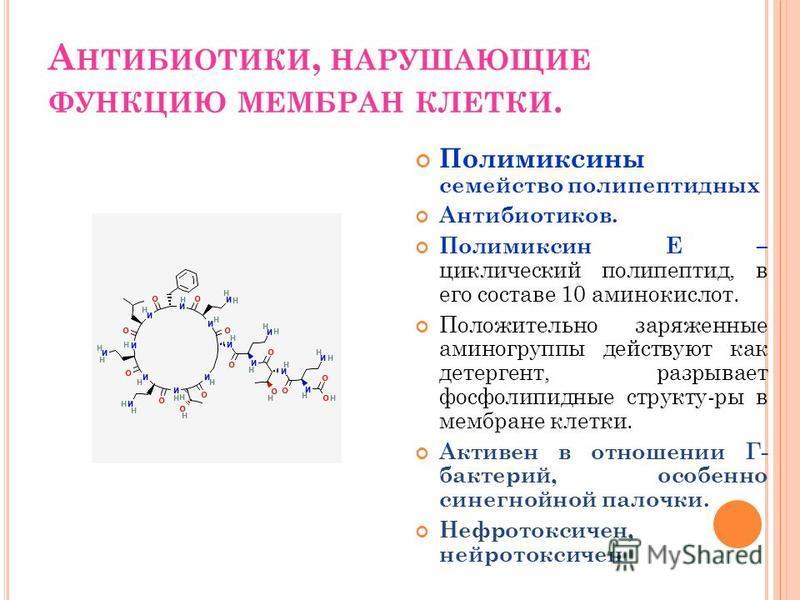 А НТИБИОТИКИ, НАРУШАЮЩИЕ ФУНКЦИЮ МЕМБРАН КЛЕТКИ. Полимиксины семейство полипептидных Антибиотиков. Полимиксин Е – циклический полипептид, в его составе 10 аминокислот. Положительно заряженные аминогруппы действуют как детергент, разрывает фосфолипидн