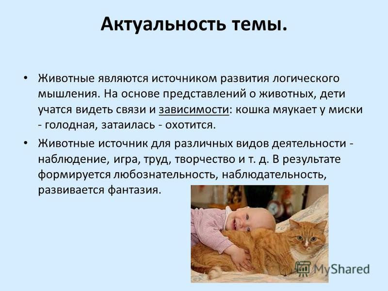 Актуальность темы. Животные являются источником развития логического мышления. На основе представлений о животных, дети учатся видеть связи и зависимости: кошка мяукает у миски - голодная, затаилась - охотится. Животные источник для различных видов д