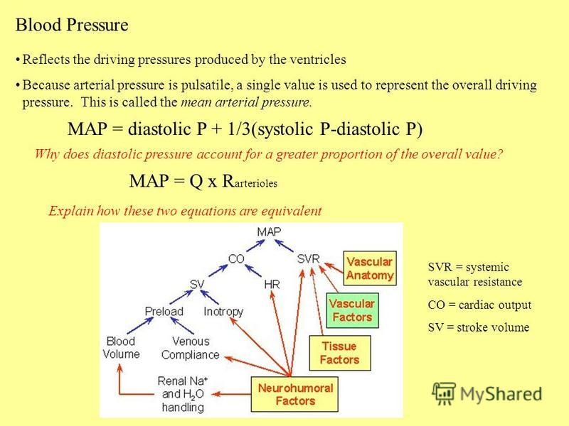 Blood Pressure Reflects the driving pressures produced by the ventricles Because arterial pressure is pulsatile, a single value is used to represent the overall driving pressure. This is called the mean arterial pressure. MAP = diastolic P + 1/3(syst