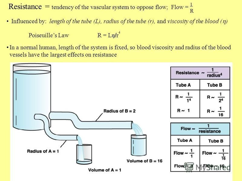 Resistance = tendency of the vascular system to oppose flow; Flow = Influenced by: length of the tube (L), radius of the tube (r), and viscosity of the blood ( ) Poiseuilles Law R = L r 4 In a normal human, length of the system is fixed, so blood vis