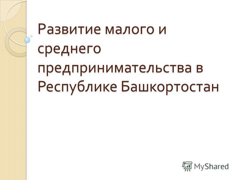 Развитие малого и среднего предпринимательства в Республике Башкортостан