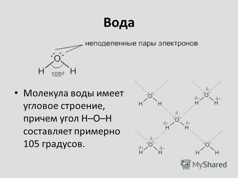 Вода Молекула воды имеет угловое строение, причем угол Н–О–Н составляет примерно 105 градусов.