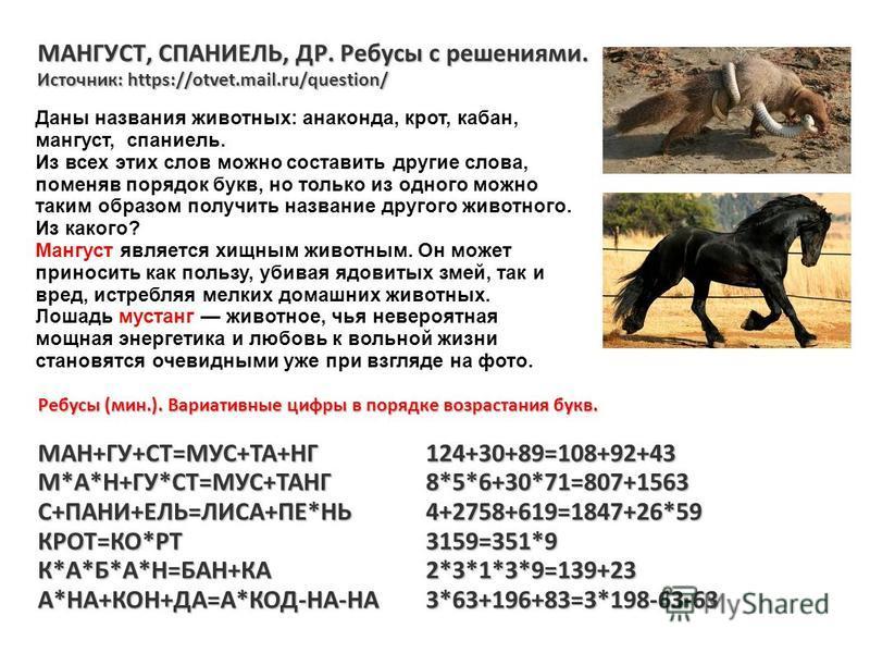 МАНГУСТ, СПАНИЕЛЬ, ДР. Ребусы с решениями. Источник: https://otvet.mail.ru/question/ Ребусы (мин.). Вариативные цифры в порядке возрастания букв. МАН+ГУ+СТ=МУС+ТА+НГ124+30+89=108+92+43 М*А*Н+ГУ*СТ=МУС+ТАНГ8*5*6+30*71=807+1563 С+ПАНИ+ЕЛЬ=ЛИСА+ПЕ*НЬ4+2