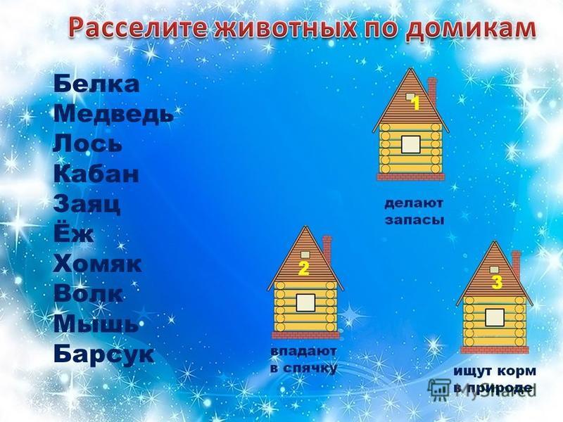 Белка Медведь Лось Кабан Заяц Ёж Хомяк Волк Мышь Барсук