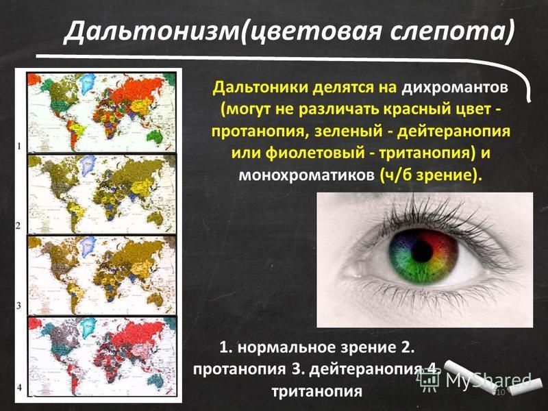 10 Дальтонизм(цветовая слепота) Дальтоники делятся на дихромантов (могут не различать красный цвет - протанопия, зеленый - дейтеранопия или фиолетовый - тританопия) и монохроматиков (ч/б зрение). 1. нормальное зрение 2. протанопия 3. дейтеранопия 4.