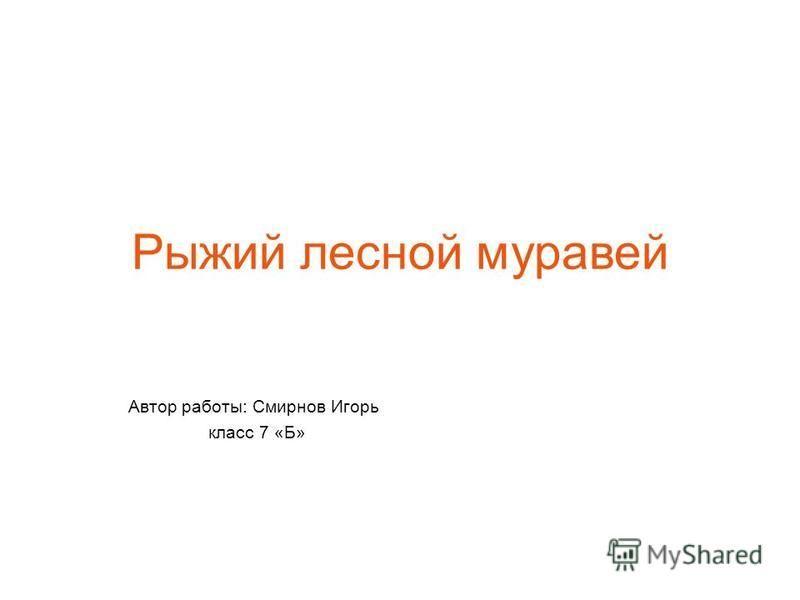 Рыжий лесной муравей Автор работы: Смирнов Игорь класс 7 «Б»