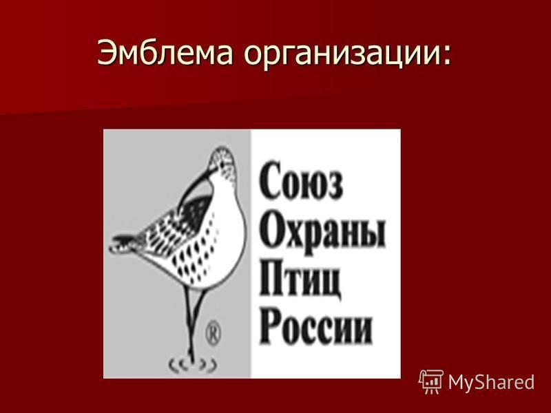 Эмблема организации: