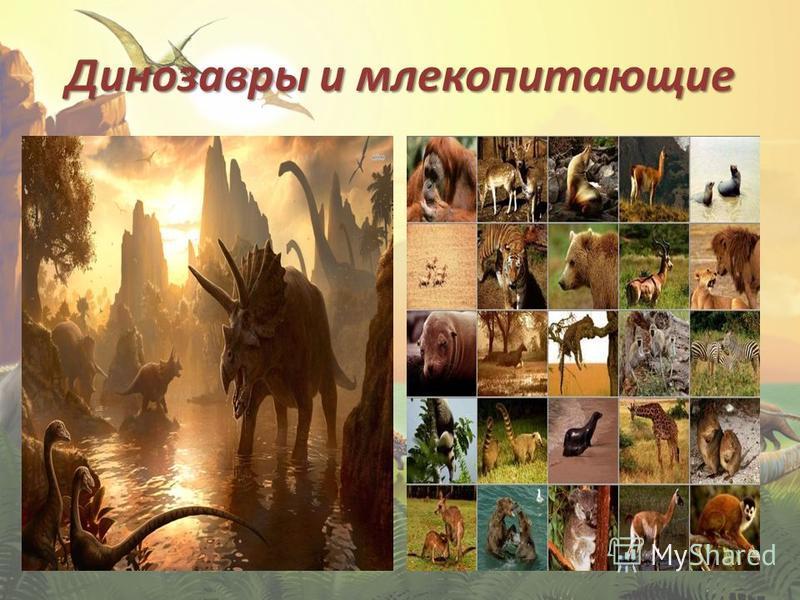 Динозавры и млекопитающие