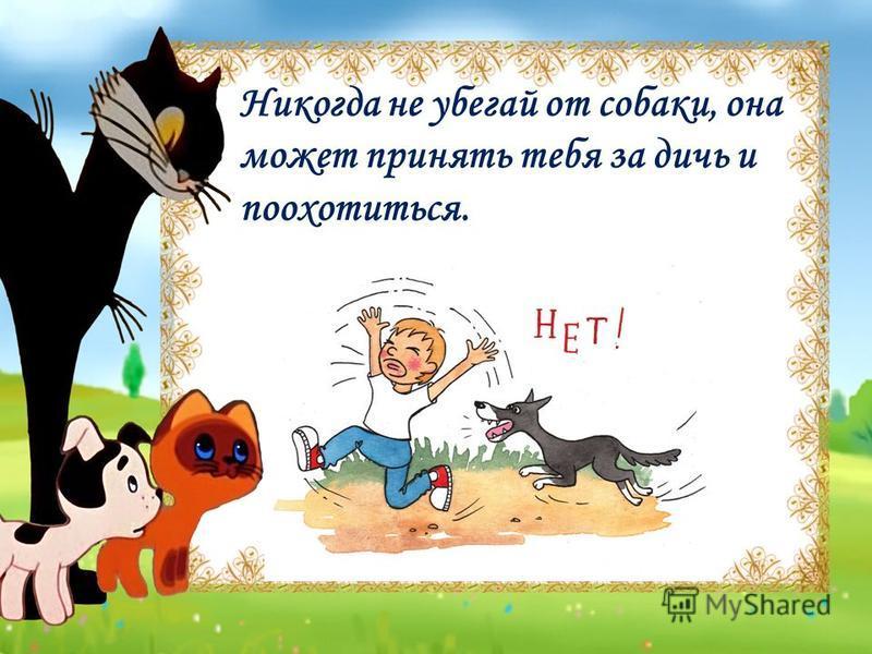 Никогда не убегай от собаки, она может принять тебя за дичь и поохотиться.
