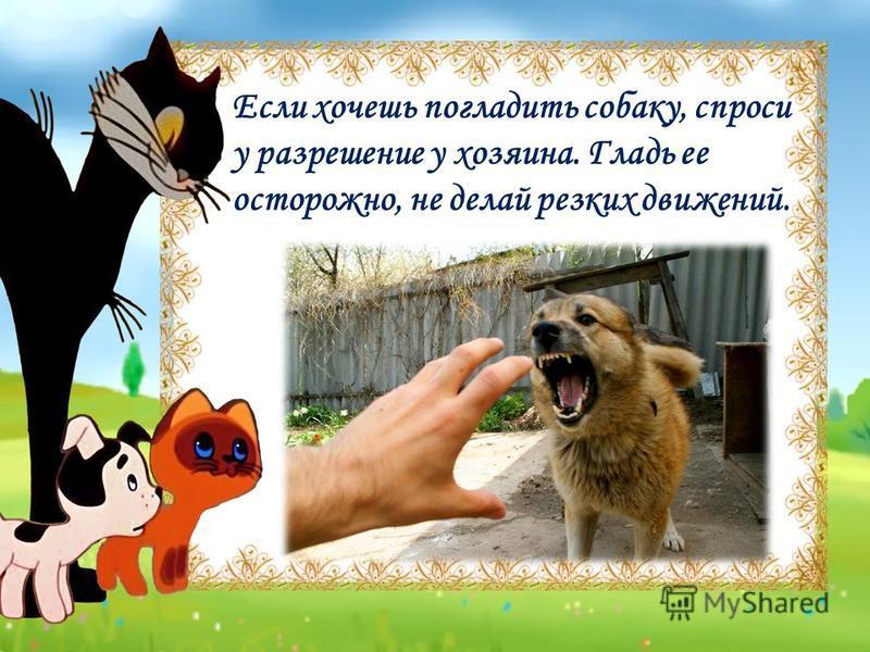 Если хочешь погладить собаку, спроси у разрешение у хозяина. Гладь ее осторожно, не делай резких движений.