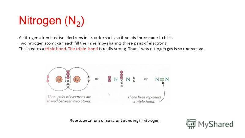 Nitrogen (N 2 ) A nitrogen atom has five electrons in its outer shell, so it needs three more to fill it. Two nitrogen atoms can each fill their shells by sharing three pairs of electrons. This creates a triple bond. The triple bond is really strong.