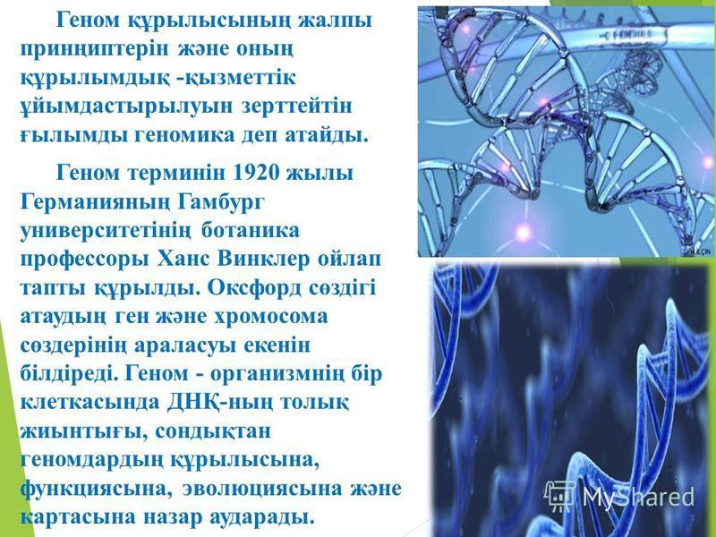 Геном құрылысының жалпы принңиптерін және оның құрылымдық -қызметтік ұйымдастырылуын зерттейтін ғылымды геномика деп атайды. Геном терминін 1920 жылы Германияның Гамбург университетінің ботаника профессоры Ханс Винклер ойлап тапты құрылды. Оксфорд сө