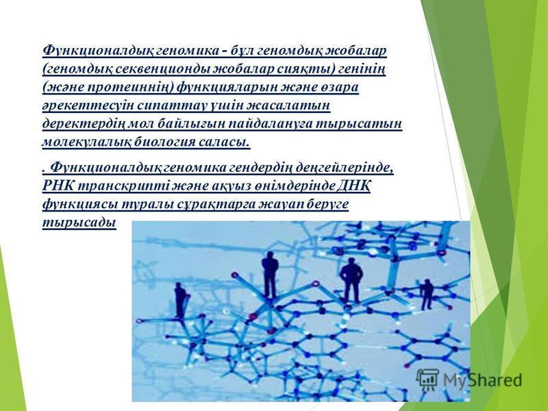 Функционалдық геномика - бұл геномдық жобалар (геномдық секвенционды жобалар сияқты) генінің (және протеиннің) функцияларын және өзара әрекеттесуін сипаттау үшін жасалатын деректердің мол байлығын пайдалануға тырысатын молекулалық биология саласы.. Ф