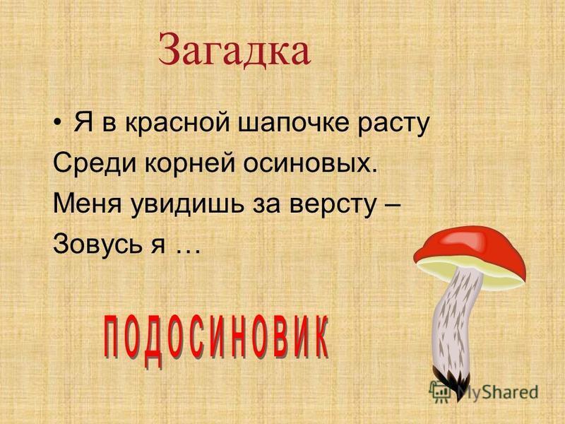 Загадка Я в красной шапочке расту Среди корней осиновых. Меня увидишь за версту – Зовусь я …