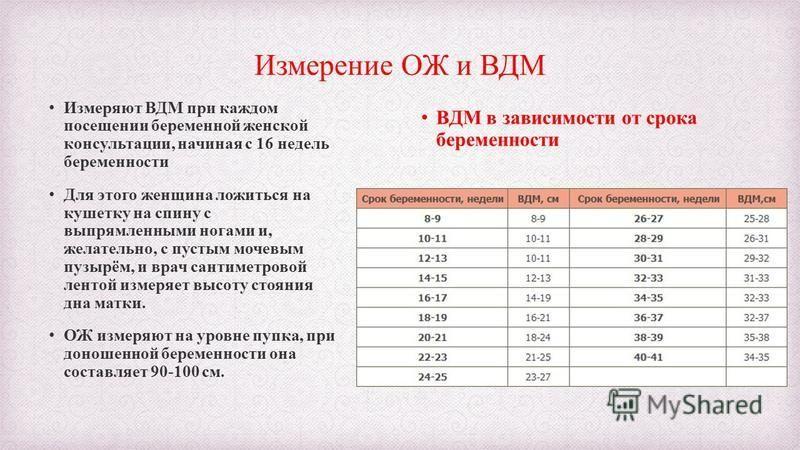 Измерение ОЖ и ВДМ Измеряют ВДМ при каждом посещении беременной женской консультации, начиная с 16 недель беременности Для этого женщина ложиться на кушетку на спину с выпрямленными ногами и, желательно, с пустым мочевым пузырём, и врач сантиметровой