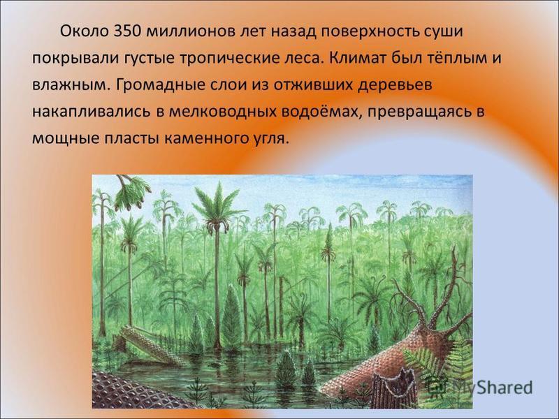 Около 350 миллионов лет назад поверхность суши покрывали густые тропические леса. Климат был тёплым и влажным. Громадные слои из отживших деревьев накапливались в мелководных водоёмах, превращаясь в мощные пласты каменного угля.