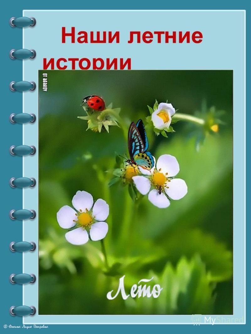 © Фокина Лидия Петровна Наши летние истории