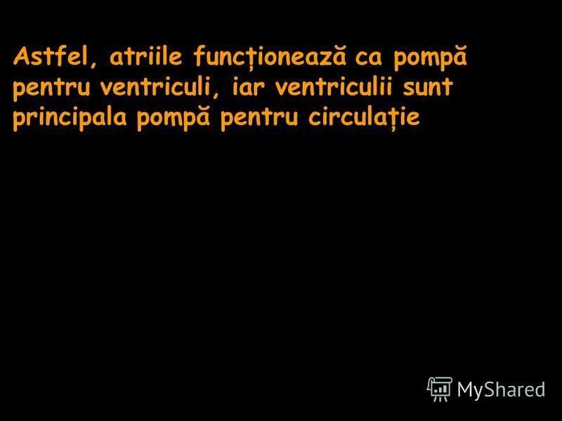 Astfel, atriile funcţionează ca pompă pentru ventriculi, iar ventriculii sunt principala pompă pentru circulaţie