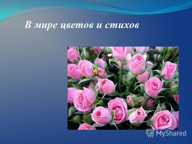 В мире цветов и стихов