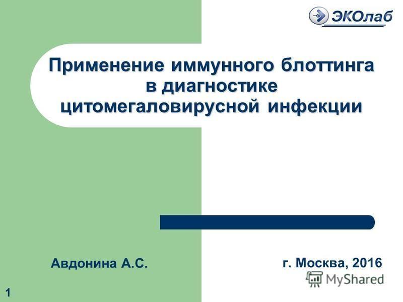 Применение иммунного блоттинга в диагностике цитомегаловирусной инфекции 1 г. Москва, 2016 Авдонина А.С.