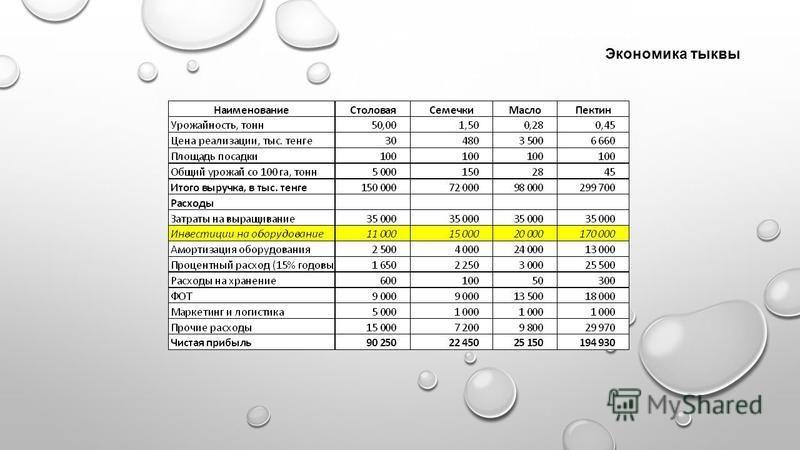 Экономика тыквы