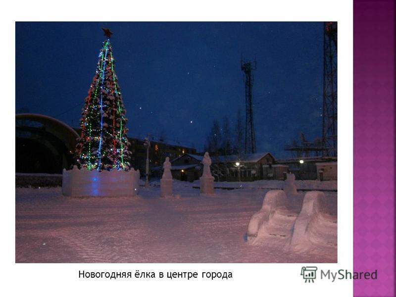 Новогодняя ёлка в центре города